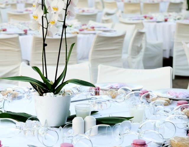 Hoteles para matrimonios en Los Lagos Región