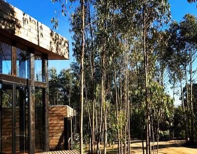Tripanko lodge&bungalows